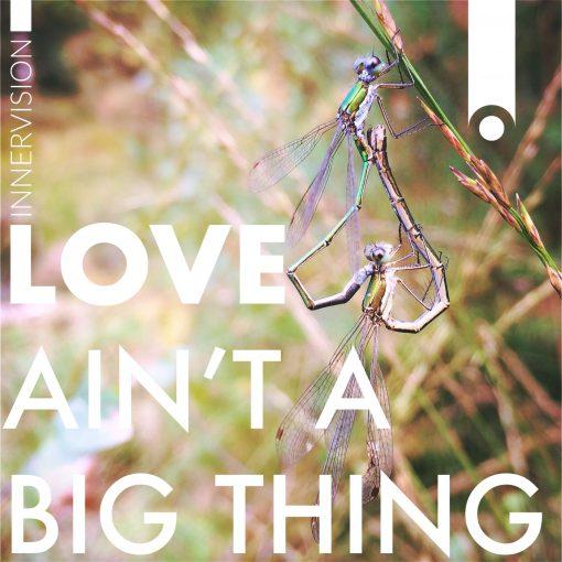 Love Ain't A Big Thing