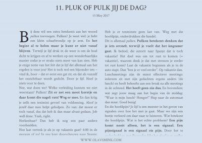 11. Pluk of Pulk jij de dag?