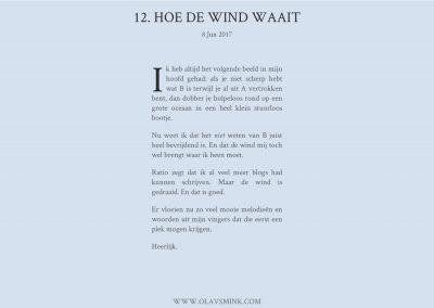 12. Hoe de wind waait